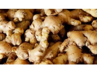 We are suppliers of best quality ginger.