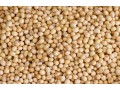 niger-origin-soya-bean-with-ldc-certificate-small-0