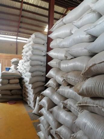 sahelian-commodities-general-enterprises-ltd-big-4