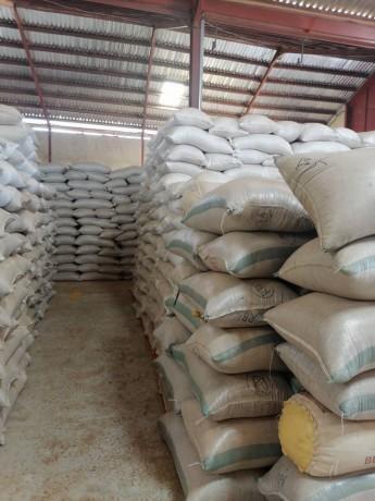 sahelian-commodities-general-enterprises-ltd-big-2