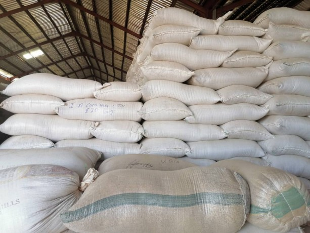sahelian-commodities-general-enterprises-ltd-big-3
