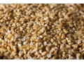 we-process-millet-and-herb-spices-small-1