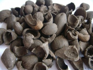 We Export sesame Seeds And palm kernel Shell