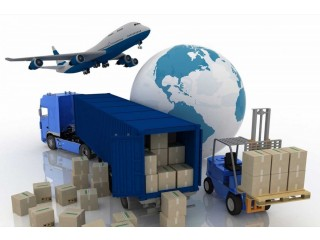 We render exportation support Services