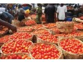 agriculture-product-are-available-for-sale-small-0