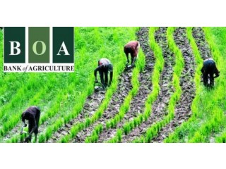 Provide easy assistance to farmers