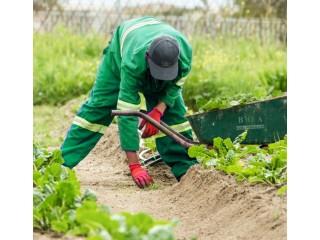 We render agricultural services