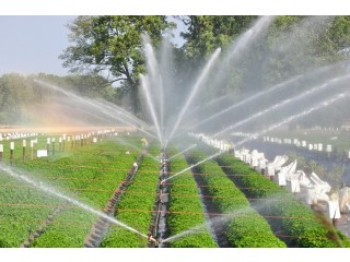 Offers sales of full drip irrigation systems