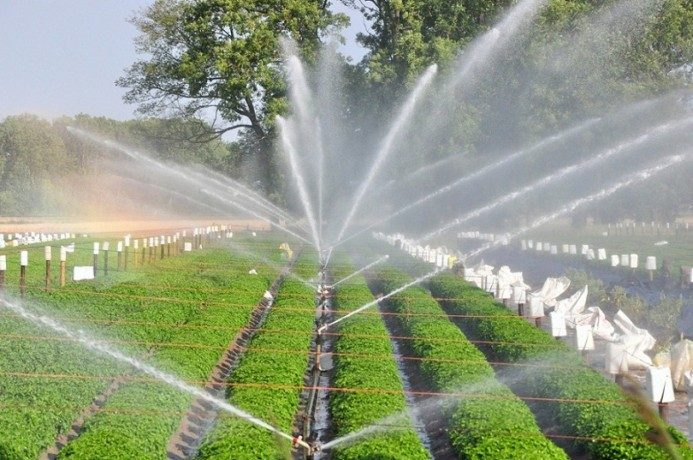 offers-sales-of-full-drip-irrigation-systems-big-0