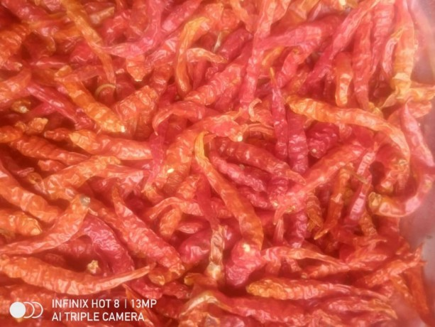 red-chili-available-for-sale-in-lagos-big-0