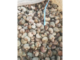 Raw Cashew Nuts Available for Sale in Lagos, Nigeria
