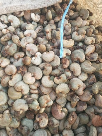 raw-cashew-nuts-available-for-sale-in-lagos-nigeria-big-0